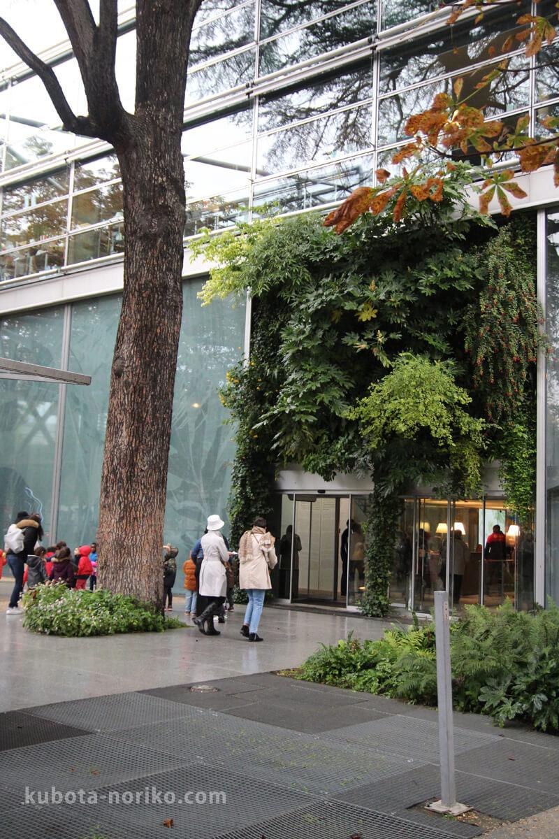 カルティエ財団現代美術館 建物