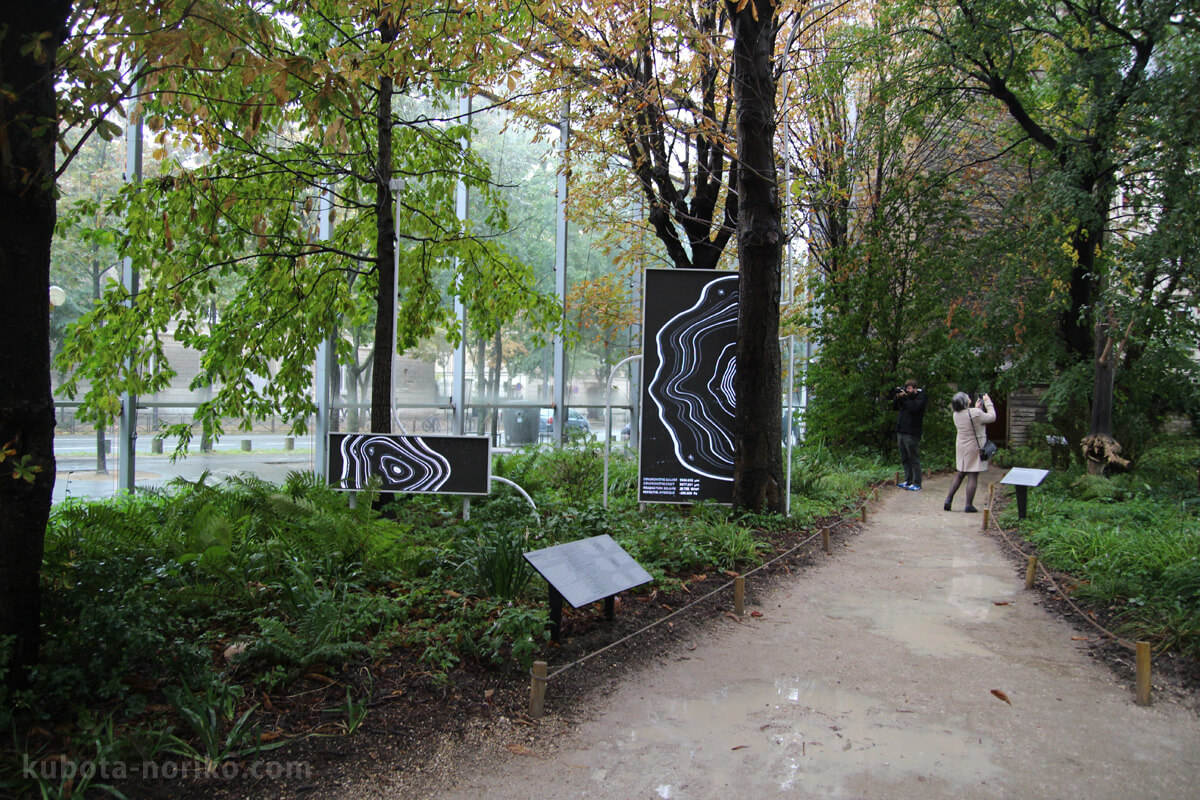 カルティエ財団現代美術館庭